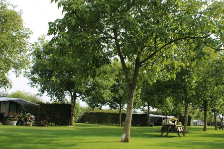 Boerderijcamping Brabant